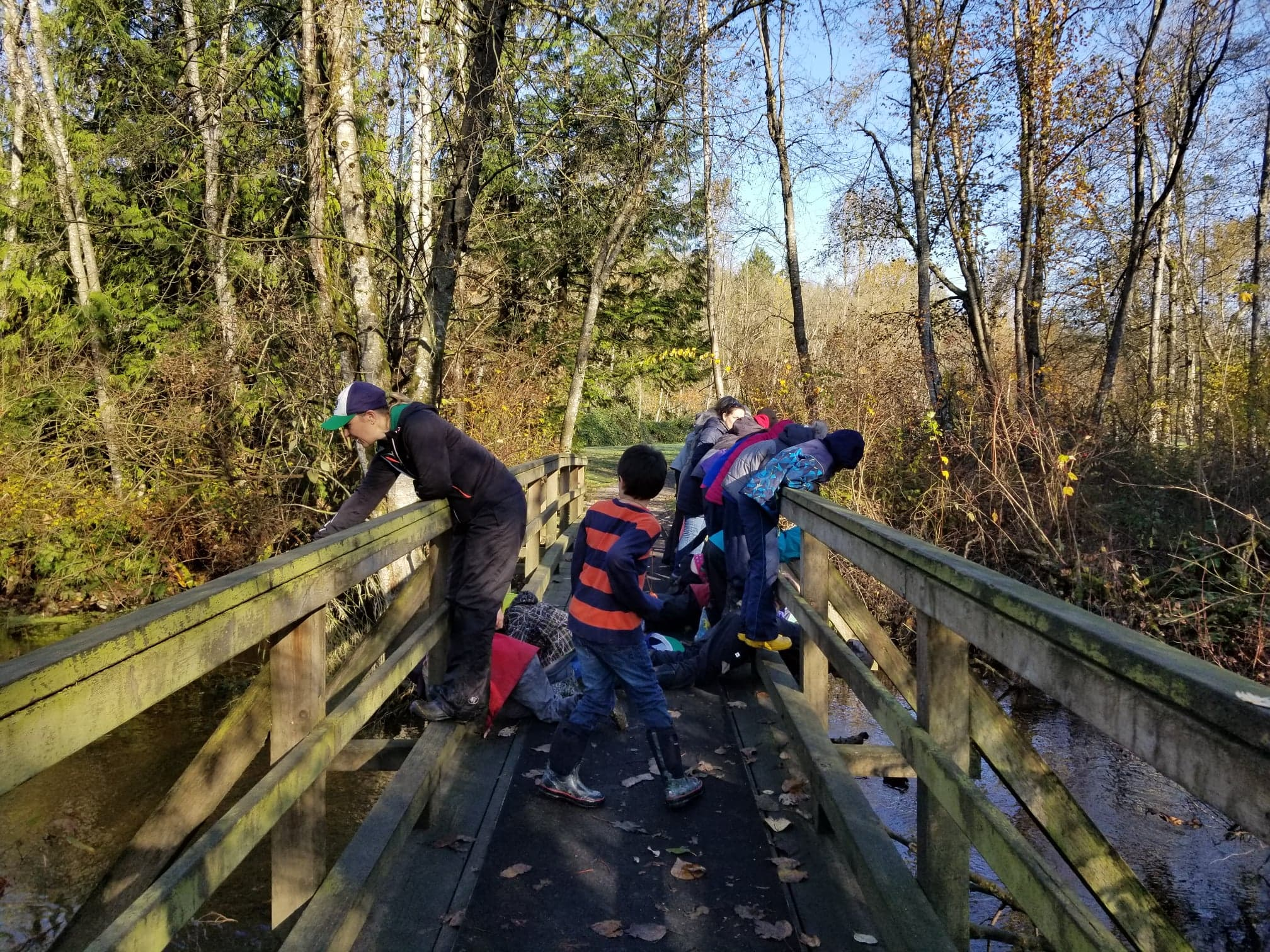 Outdoor Explorations: Our Outdoor Classroom Opportunity